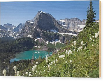 Grinnell Lake With Beargrass Wood Print