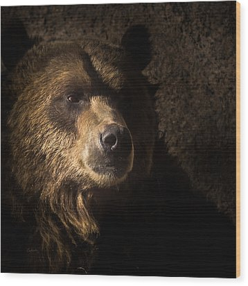 Grizzly 2 Wood Print