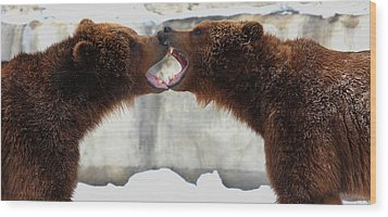 Wood Print featuring the photograph Grizzly Bears Facing Off by Jerome Lynch