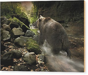 Wood Print featuring the photograph Grizzly Creek by Roy  McPeak