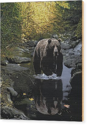 Grizzly Reflection Wood Print by Brent Ander
