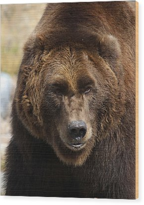 Wood Print featuring the photograph Grizzly by Steve McKinzie