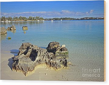 Grotto Bay Beach Wood Print by Charline Xia