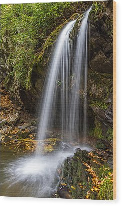Grotto Falls Great Smoky Mountains Wood Print by Pierre Leclerc Photography
