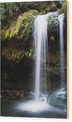 Wood Print featuring the photograph Grotto Falls by Jay Stockhaus
