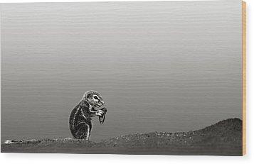 Ground Squirrel Wood Print by Johan Swanepoel