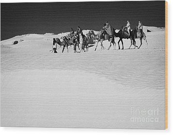 group of tourists in desert dress on camel back being taken through the sand dunes and ruins sahara desert at Douz Tunisia Wood Print by Joe Fox