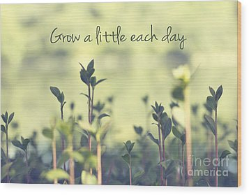 Grow A Little Each Day Inspirational Green Shoots And Leaves Wood Print