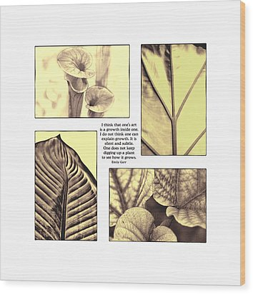Wood Print featuring the photograph Growth by John Hansen