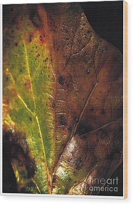 Growth-leaf Wood Print