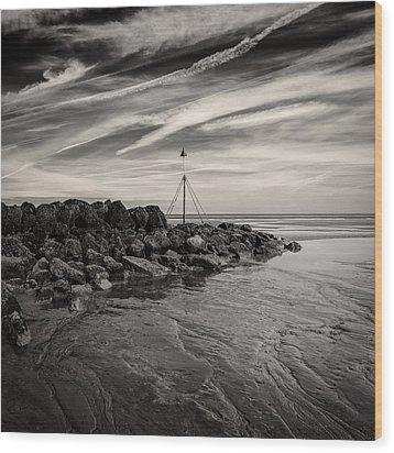 Groyne Marker Wood Print by Dave Bowman