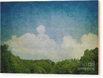 Grunge Background With Landscape Wood Print by Mythja  Photography