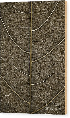 Grunge Leaf Detail Wood Print