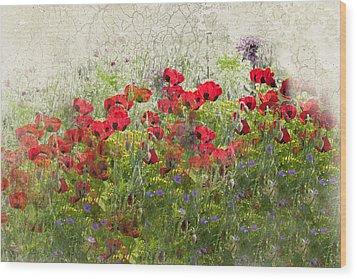 Grunge Poppy Field Wood Print by Lesley Rigg