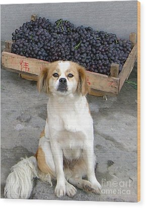Guardian Of The Grapes Wood Print by Barbie Corbett-Newmin