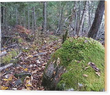 Guardian Rock Wood Print by Leone Lund