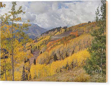 Guardsman Pass Aspen - Big Cottonwood Canyon - Utah Wood Print by Gary Whitton