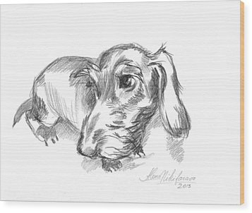 Guilty-looking Young Wire-haired Dachshund Wood Print