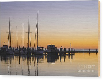 Gulf Of Mexico Sailboats At Sunrise Wood Print by Andre Babiak