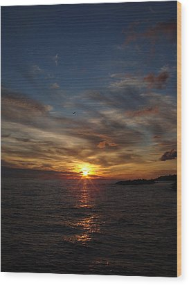 Wood Print featuring the photograph Gull Rise by Bonfire Photography