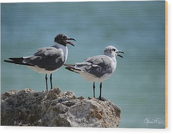 Gull Talk Wood Print