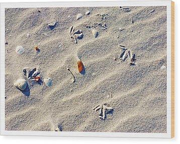 Gull Tracks Wood Print