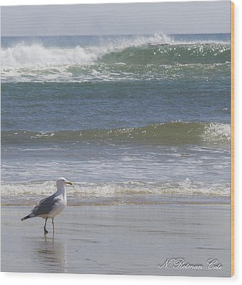 Gull With Parallel Waves Wood Print