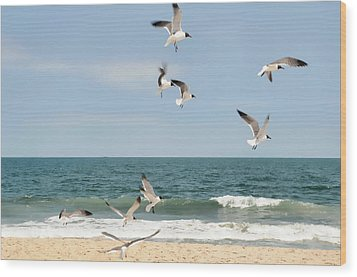 Gulls A Dance'n Wood Print