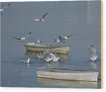 Gulls And Dories Wood Print by Christopher Mace