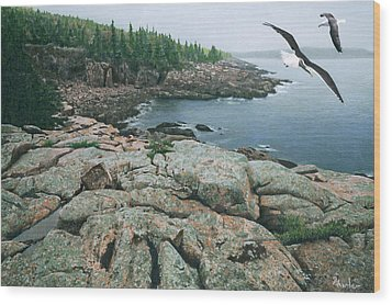 Gulls At Monument Cove Wood Print