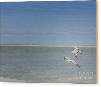 Wood Print featuring the photograph Gulls In Flight by Erika Weber