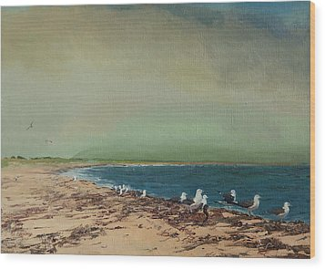 Gulls On The Seashore Wood Print
