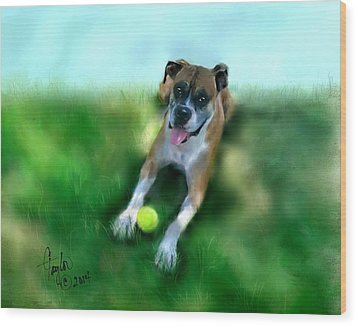 Gus The Rescue Dog Wood Print by Colleen Taylor