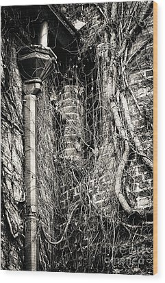 Gutter Pipe Wood Print by John Rizzuto