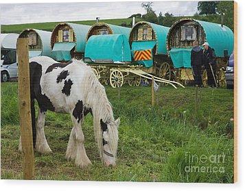 Gypsy Cob And Wagons Wood Print by Liz  Alderdice