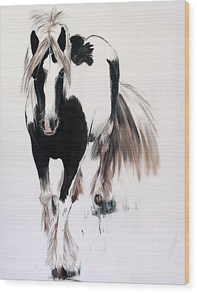 Gypsy Vanner Wood Print