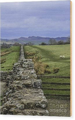 Hadrian's Wall Wood Print by Mary Carol Story
