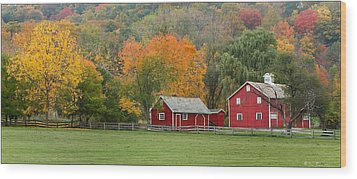 Hale Farm And Village Wood Print by Daniel Behm