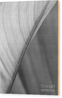 Half And Half Wood Print by Sabrina L Ryan
