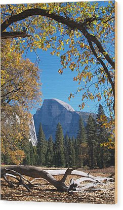 Half Dome In Yosemite Wood Print by Alex Cassels