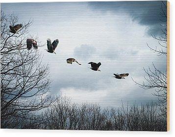 Half Second Of Flight Wood Print by Bob Orsillo