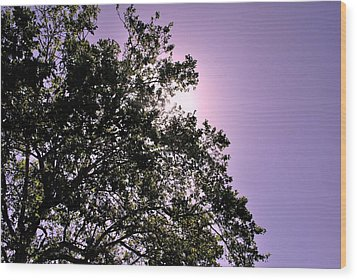 Wood Print featuring the photograph Half Tree by Matt Harang