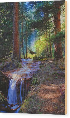 Hall Valley Moose Wood Print by J Griff Griffin