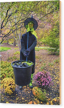 Halloween Witch Wood Print by Thomas Woolworth