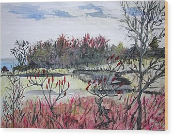 Hamlin Ontario Plein Aire Wood Print by Judy Via-Wolff