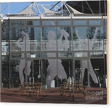 Hampshire County Cricket Glass Pavilion Wood Print by Terri Waters