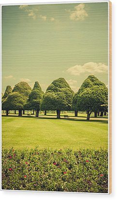 Hampton Court Palace Gardens Summer Colours Wood Print by Lenny Carter