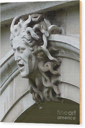Hampton Court Palace Medusa Wood Print by Deborah Smolinske