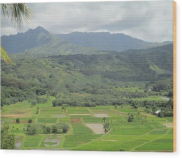 Wood Print featuring the photograph Hanalei by Alohi Fujimoto