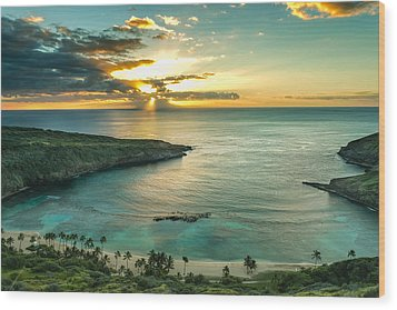 Hanauma Bay 1 Wood Print